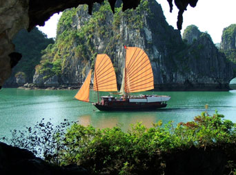 HN4 -Halong tour 1 day(Group tour)